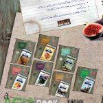 کتاب تست عربی دهم انسانی مرشد مبتکران